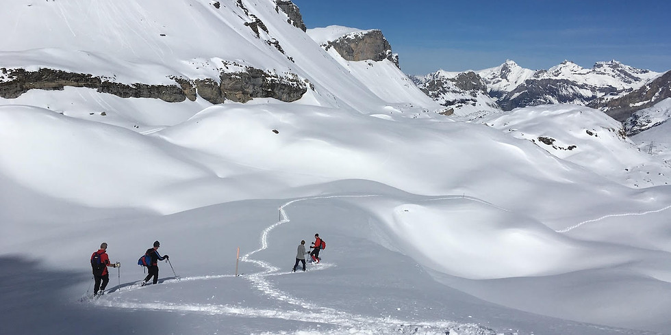 20-21 Mar. / Winter Magic - Découvertes des Alpes Bernoises / Bernese Alps