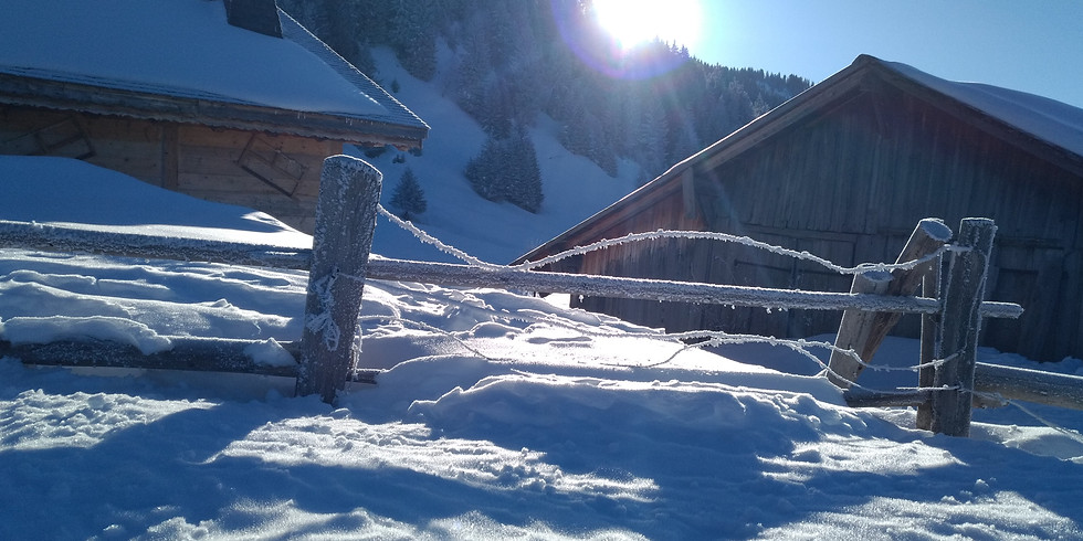 17 Mar. / Winter Magic - Snowshoeing adventure / Balade en raquettes (1)