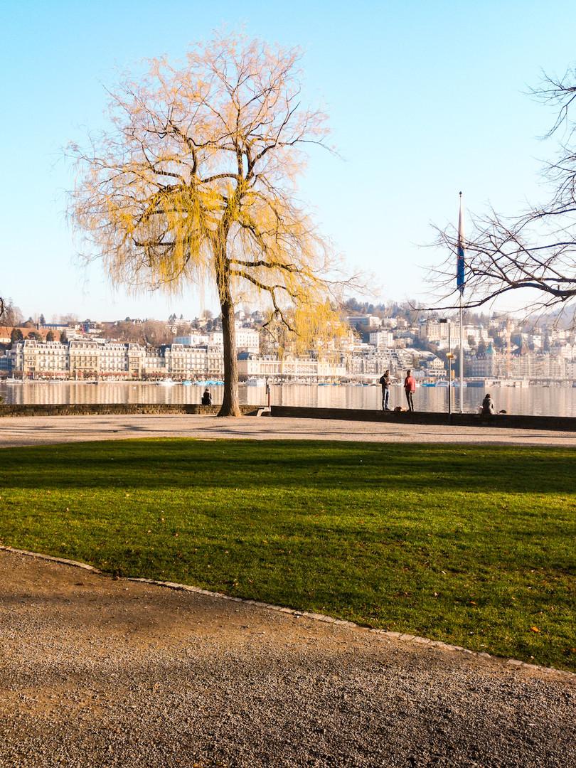 Swiming spot in Lucerne