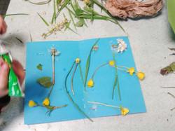 Composition et récolte du jardin