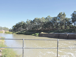 Inland Rivers Network takes legal action against Barwon-Darling Irrigator