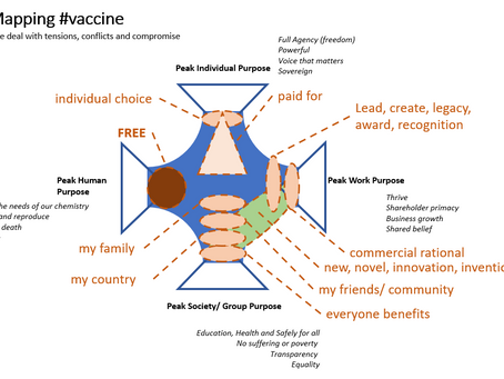 Vaccines and Mapping the Paradox