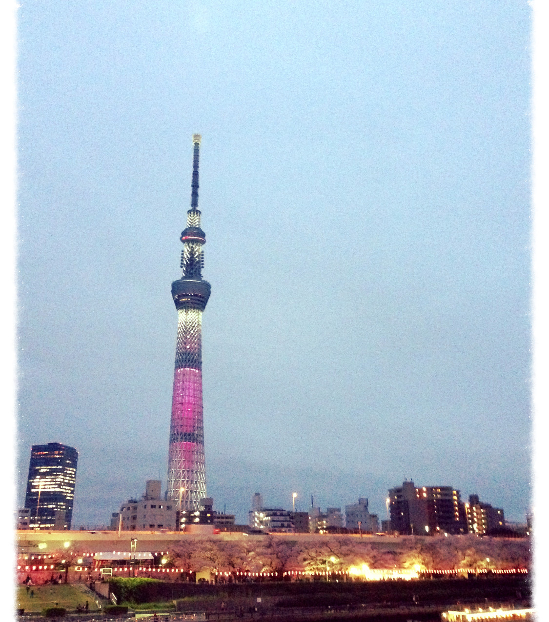 Sumida-river and the Skytree @Tokyo