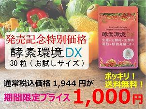 dx-1000-ba.jpg