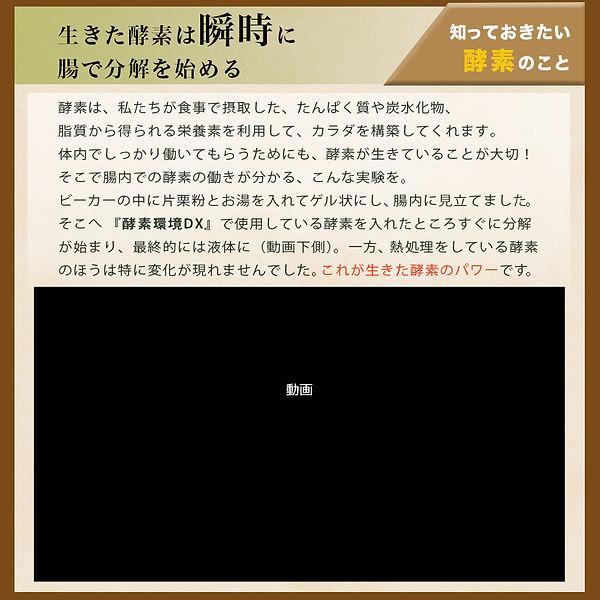 kosokankyo-dx_14.jpg