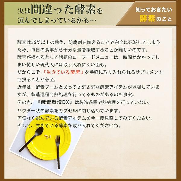 kosokankyo-dx_12.jpg