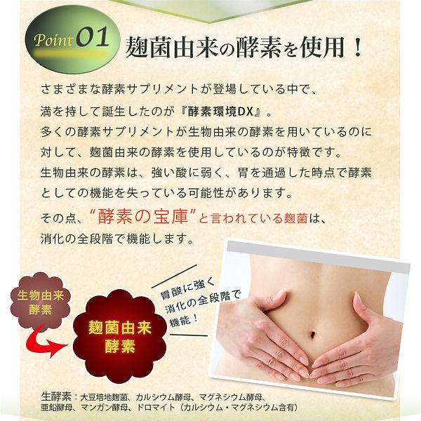 kosokankyo-dx_05.jpg