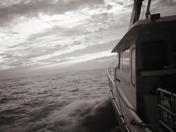 Diving aboard Tempest