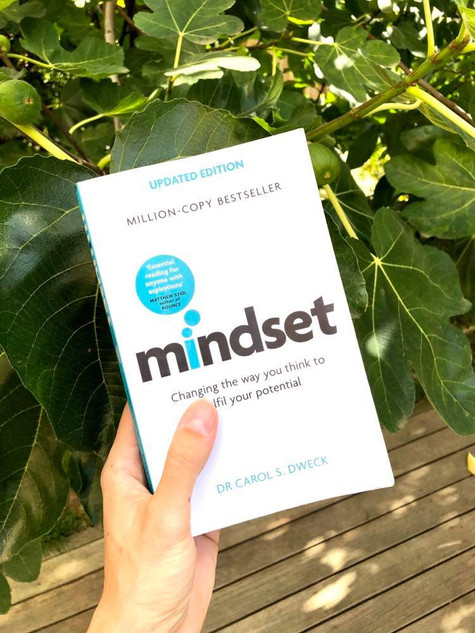 Book review: 'Mindset'