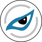 Bird's Eye View input/output | RidgeRun
