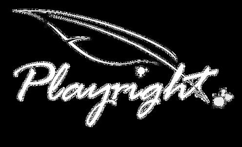 Playright-logo.png