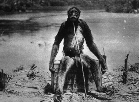 Horror na Amazônia (parte 2) - a criatura que há séculos assombra a maior floresta do mundo