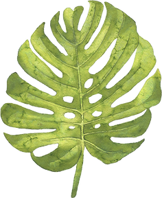 48-484418_green-large-leaf-hand-painted-