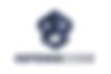 defensecode logo nuevo.PNG