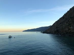 Countdown to Catalina!