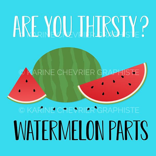 Illustration vectorielle vector watermelon melon d'eau parts parties graines découpé tranche Karine Chevrier graphiste