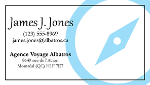 carte affaire card business voyage agence agency travel albatros bird kaz design photoshop illustrator