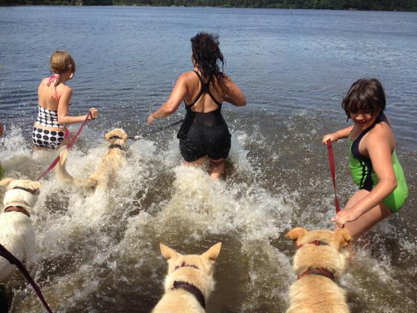 SLED DOG CAMPS 2017!