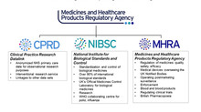 UK medicines regulation: responding to current challenges