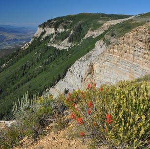 The Roan Plateau