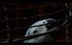 Capture d'écran 2013-06-10 à 23.56.24
