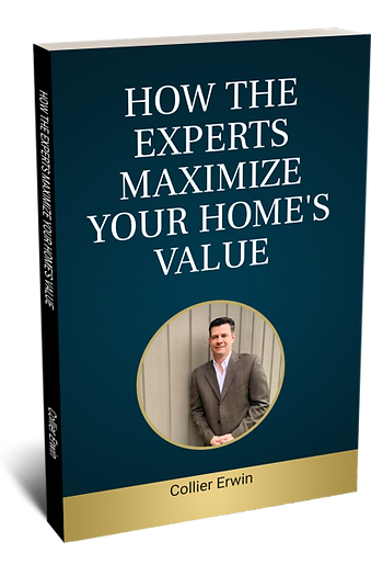 Sellers Book Cover Pic.png