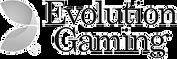 evolution-gaming.png