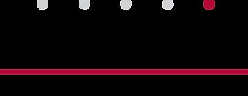 Savvi_Logo.png