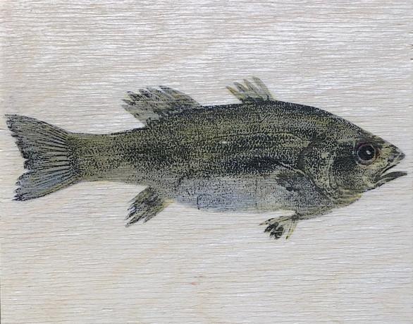 "Gyotaku Photo Transfer on Birch 4""x5"" 2020"