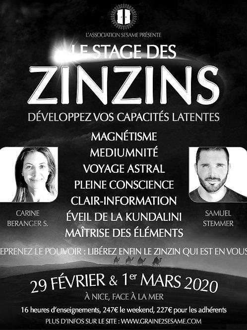 Le stage des ZINZINS • 29 Février & 1er Mars 2020 • COMPLET •