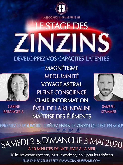 Le stage des ZINZINS •  2 - 3 Mai 2020 • Nice