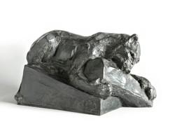 Jaguar mordant une Bûche