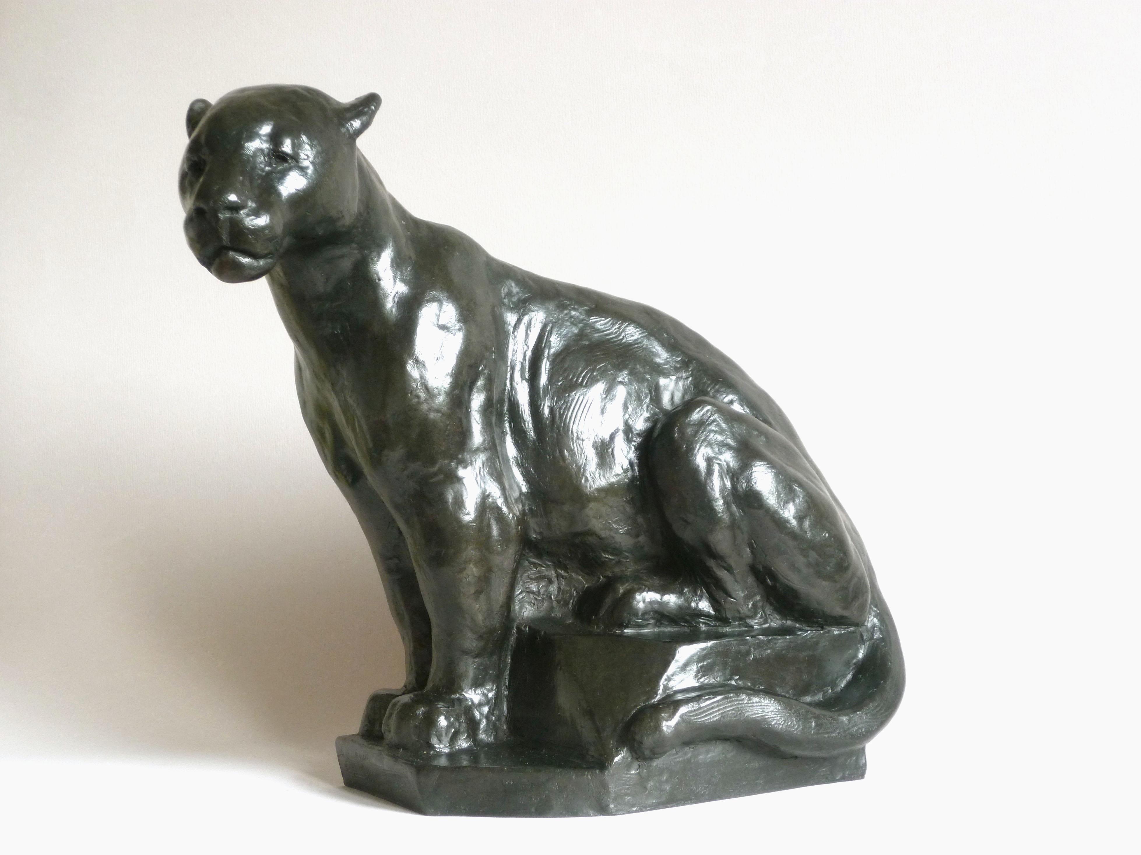 Aramis le Jaguar