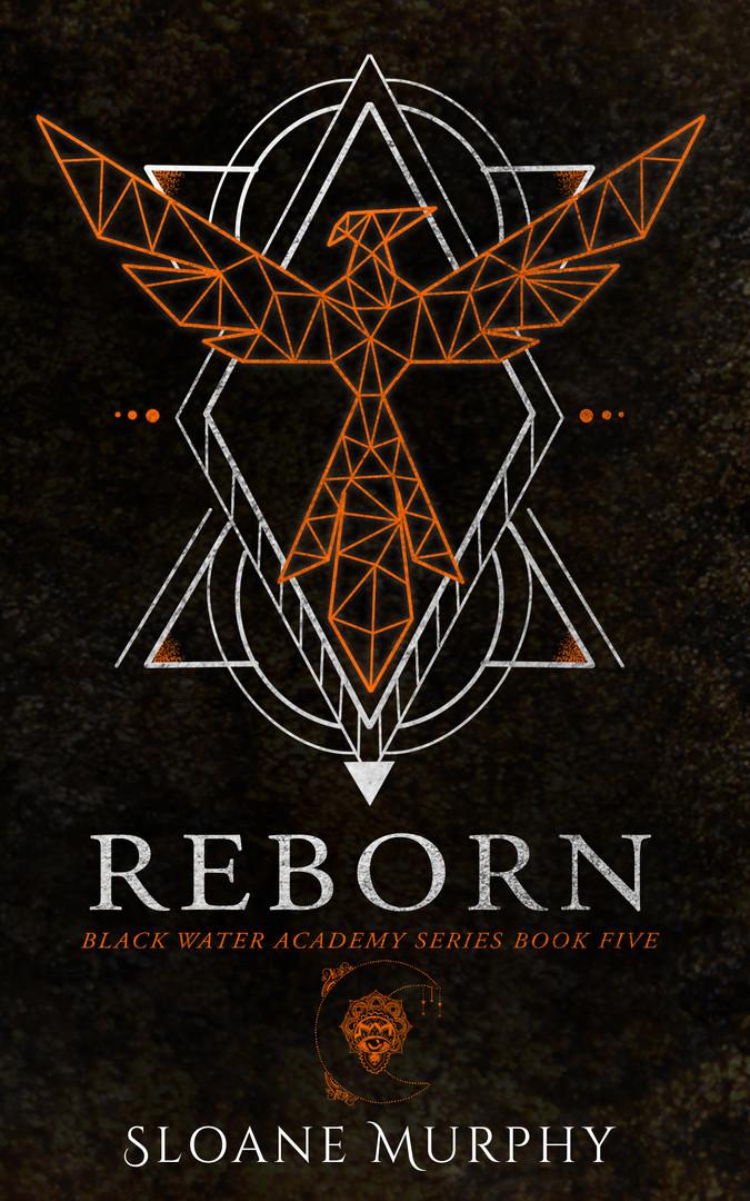 5. Reborn ebook.jpg