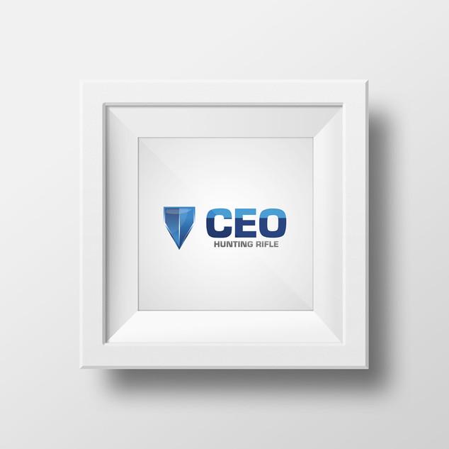 CEO 2017