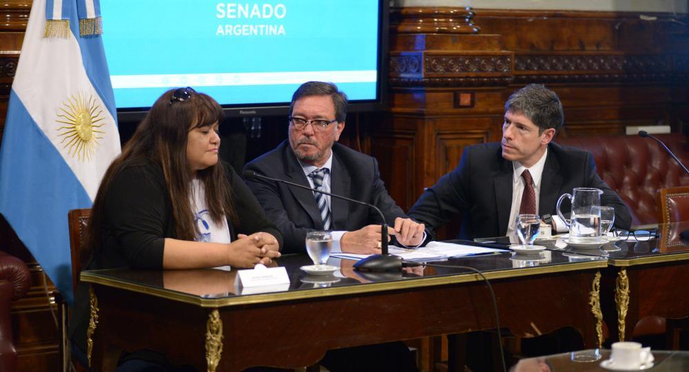 Senado de la Nación Roxana Dominguez