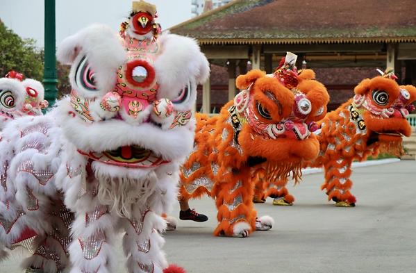 Lion Dance Lunar New Year.png