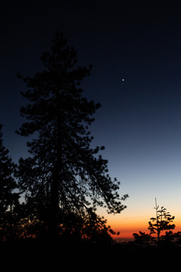 Sequoia National Park 7.jpg