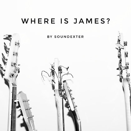 Where Is James? (Extended License)