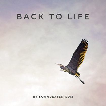 Back To Life (Extended License)