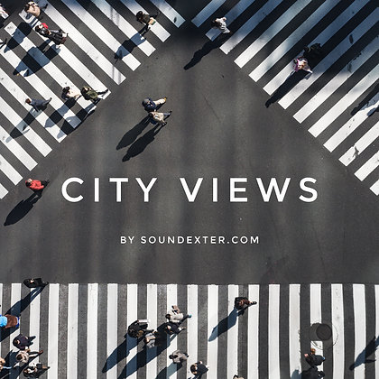 City Views (Basic License)