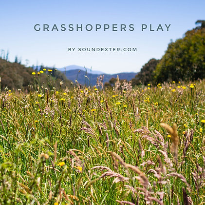 Grasshoppers Play (Extended License)