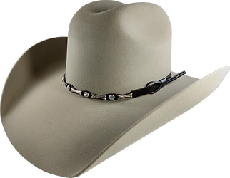 Texana beige toro lado.png