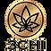 3chi-logo-nav.png