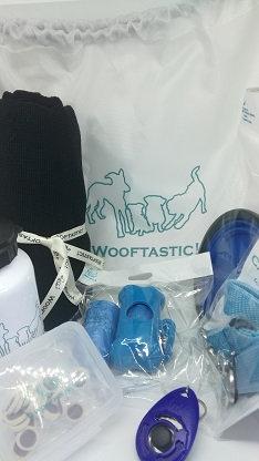 Dog Walking/Travel Kit