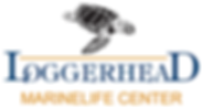 loggerhead marinelife center.png