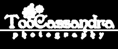 Cassandra logo - white.png