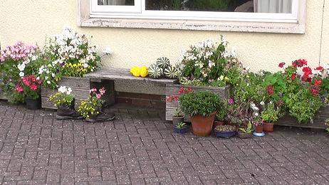 C-container-garden.jpg