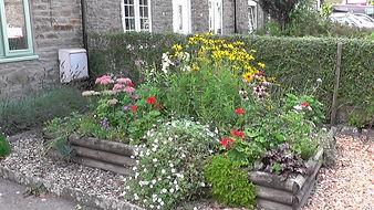 TC-best-front-garden.jpg