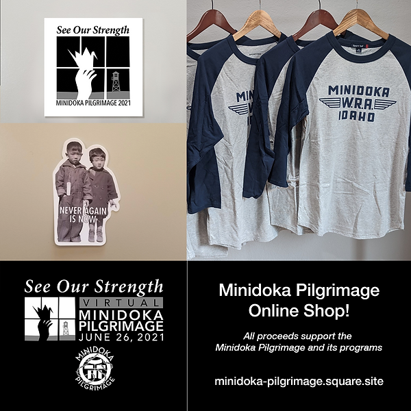 MPPC_Store.png